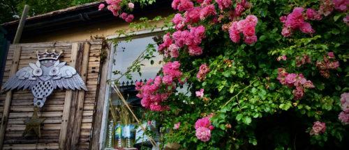 Summer Solstice - Litha